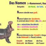 Ragam Kata Benda Singular Bahasa Jerman